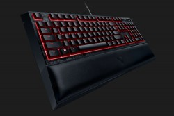 KEYBOARD RAZER DESTINY 2 ORNATA CHROMA (RZ03-02043400-R3M1)